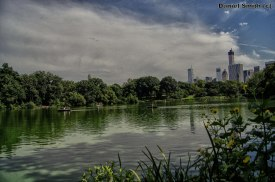 Central Park Scenery