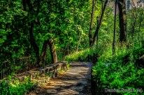 Green Scenery