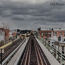 dsforeverphotography.com